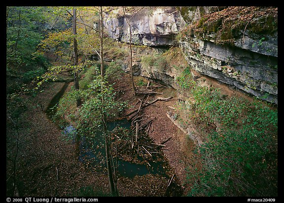 Limestone cliffs and karstic depression in autumn. Mammoth Cave National Park (color)