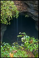 Entrance shaft and rain-fed water drip. Mammoth Cave National Park ( color)