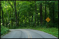 Houchin Ferry Road. Mammoth Cave National Park ( color)