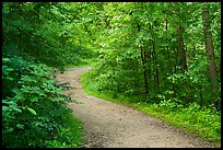 River Styx Trail in summer. Mammoth Cave National Park ( color)