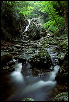 Falls of the Rose river. Shenandoah National Park ( color)