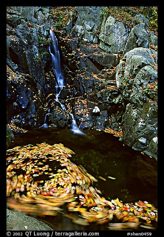 Spining leaves and cascade. Shenandoah National Park (color)