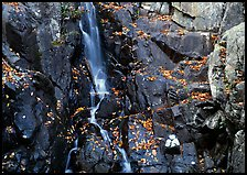 Stream cascading over dark rock in autumn. Shenandoah National Park ( color)