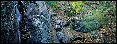 Rocky outcrop in fall forest with cascading water. Shenandoah National Park (Panoramic color)