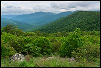 Jewell Hollow Overlook in spring. Shenandoah National Park ( color)