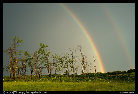 Double rainbow and trees, Big Meadows. Shenandoah National Park (color)