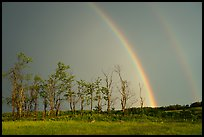 Double rainbow and trees, Big Meadows. Shenandoah National Park ( color)