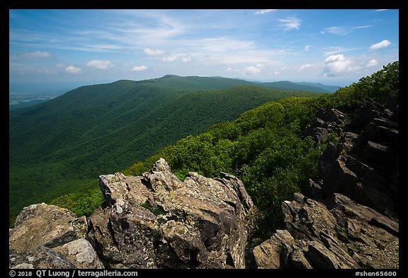 View from Hawksbill Mountain. Shenandoah National Park (color)