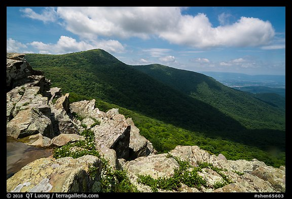 Crescent Rock and Hawksbill Mountain. Shenandoah National Park (color)