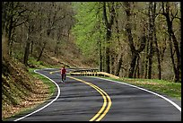 Bicyclist on Skyline drive. Shenandoah National Park, Virginia, USA. (color)