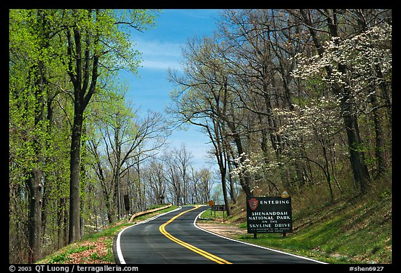 Skyline drive with Park entrance sign. Shenandoah National Park (color)