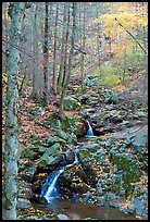 Cascades in fall, Hogcamp Branch of the Rose River. Shenandoah National Park ( color)