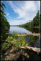 Beast Lake. Voyageurs National Park ( color)