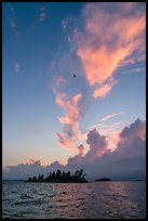 Bird, islets and clouds at sunset, Rainy Lake. Voyageurs National Park ( color)