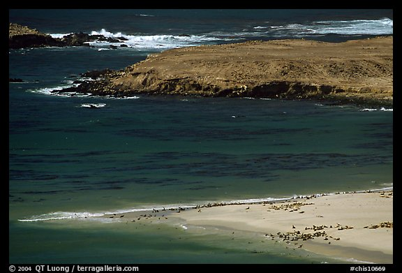Point Bennet and rookeries, mid-day, San Miguel Island. Channel Islands National Park (color)