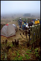 Campers in fog, San Miguel Island. Channel Islands National Park ( color)