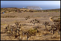Campground, San Miguel Island. Channel Islands National Park ( color)