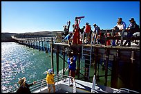 Approaching Bechers Bay pier, Santa Rosa Island. Channel Islands National Park ( color)