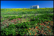 Water storage building with church-like facade, Anacapa. Channel Islands National Park, California, USA. (color)
