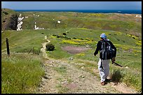 Hiker on trail in the spring, Santa Cruz Island. Channel Islands National Park ( color)