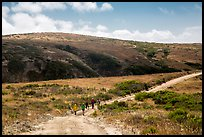 Hikers on road, Santa Rosa Island. Channel Islands National Park ( color)