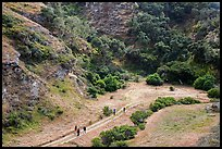 Hikers at Lobo Canyon entrance, Santa Rosa Island. Channel Islands National Park ( color)