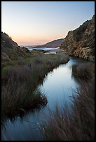 Wetland at he bottom of Water Canyon, and Ocean, sunrise, Santa Rosa Island. Channel Islands National Park ( color)