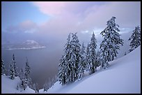 Snow-covered trees and misty lake at sunset. Crater Lake National Park ( color)