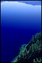 Trees and blue lake waters. Crater Lake National Park ( color)