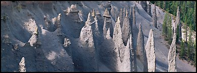 Cluster of volcanic columns. Crater Lake National Park (Panoramic color)