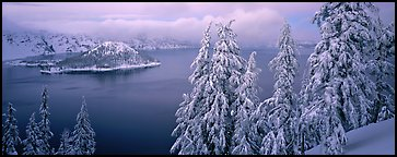 Snowy trees, lake, and Wizard Island. Crater Lake National Park (Panoramic color)