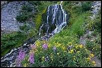 Vidae Falls and stream. Crater Lake National Park ( color)