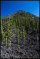 Lava rocks and cinder cone, Wizard Island. Crater Lake National Park ( color)