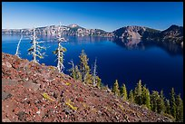 Red cinders and ash on Wizard Island. Crater Lake National Park ( color)