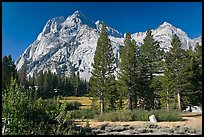 Langille Peak and pine trees, Big Pete Meadow, Le Conte Canyon. Kings Canyon National Park, California, USA. (color)