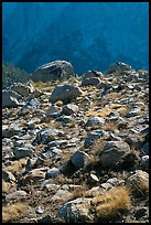 Boulders in meadow and Le Conte Canyon walls. Kings Canyon National Park, California, USA. (color)
