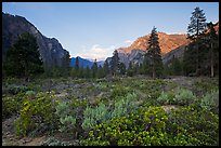 Meadow and cliffs at sunset, Cedar Grove. Kings Canyon National Park, California, USA.
