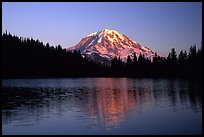 Mt Rainier above Eunice Lake, sunset. Mount Rainier National Park, Washington, USA. (color)