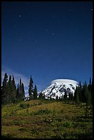 Mount Rainier and stars by night. Mount Rainier National Park, Washington, USA. (color)