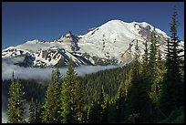 Mount Rainier from Sunrise. Mount Rainier National Park ( color)