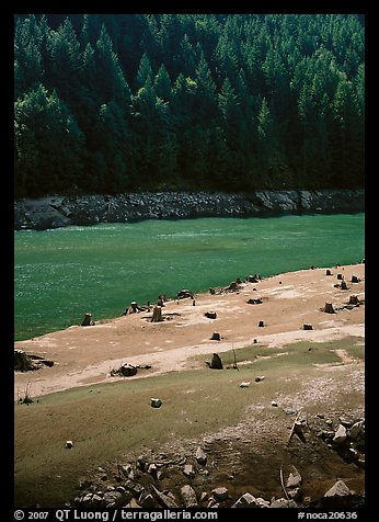 Tree stumps and river. North Cascades National Park (color)