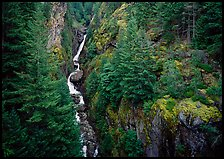 Gorge Creek falls in summer, North Cascades National Park Service Complex. Washington, USA. (color)