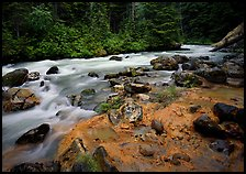 Creek near Kennedy hot springs, Glacier Peak Wilderness, Mt. Baker/Snoqualmie National forest. Washington ( color)