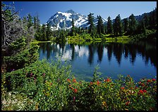 Mount Shuksan and Picture lake, mid-day,  North Cascades National Park.  ( color)