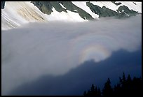 Sun projected on clouds filling Cascade River Valley,. Washington, USA.