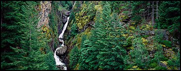 Waterfall in gorge surrounded by forest. North Cascades National Park (Panoramic color)