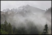 Peaks and fog, North Cascades National Park.  ( color)