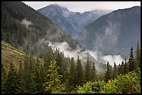 North Fork of the Cascade River Valley, North Cascades National Park. Washington, USA.