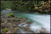 Smooth flow of North Fork of the Cascade River in the fall, North Cascades National Park.  ( color)