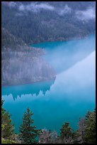 Turquoise waters and fog, Diablo Lake, North Cascades National Park Service Complex. Washington, USA.